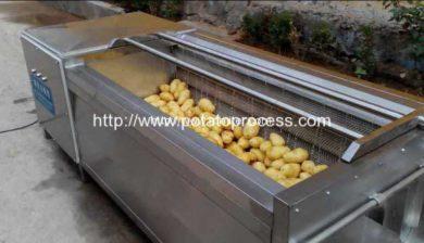 Brush-Roller-Type-Potato-Washing-Peeling-Machine-Manufacture-and-Supplier